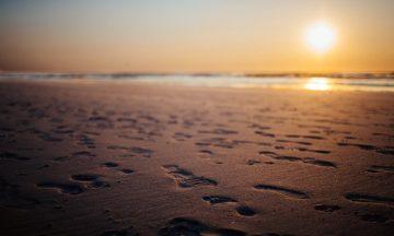 Best Digital Foot Forward – The First Steps of a Digital Footprint