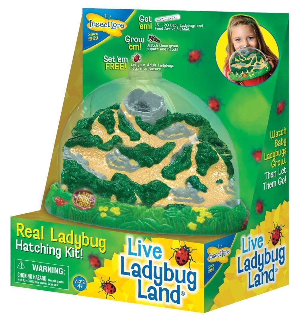 9 educational toys to inspire a love for nature