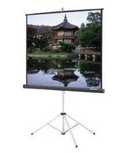 Da-lite 96x96 Tripod Projector Screen - projector screens