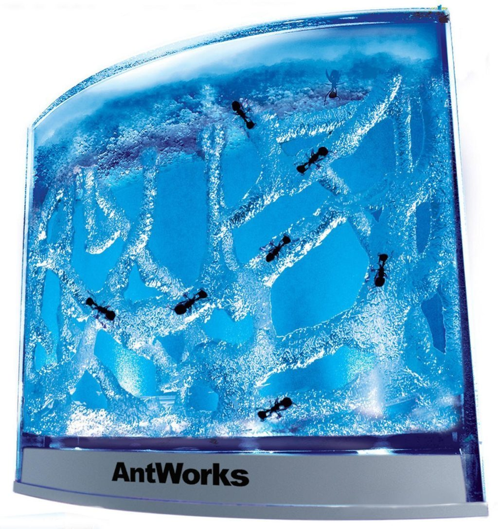 Fascinations-AntWorks-Illuminated-Blue-1024x1087.jpg