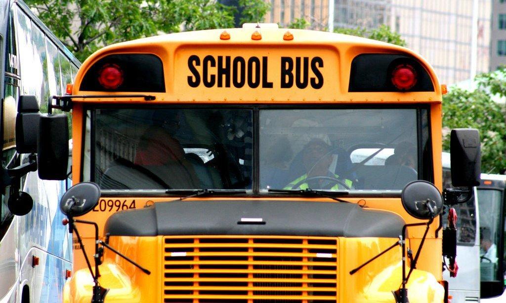11 Favorite Magic School Bus Books, DVDs and Activity Sets