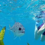 7 Underwater Cameras to Capture the Moment