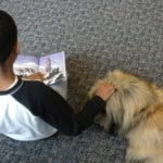 Why You Shouldn't Shrug off Your Son's Reading Habit this Summer