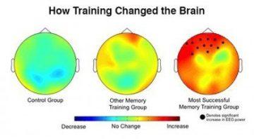 John Hopkins: This Brain Exercise Improves Working Memory