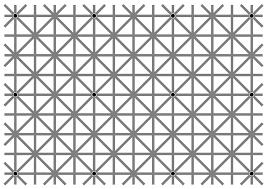 Image of 12 black dots illusion