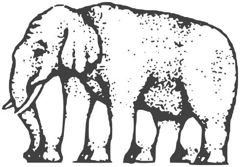 Image of Elephant Legs Illusion