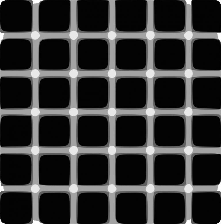 Image of Hermann Grid Optical Illusion
