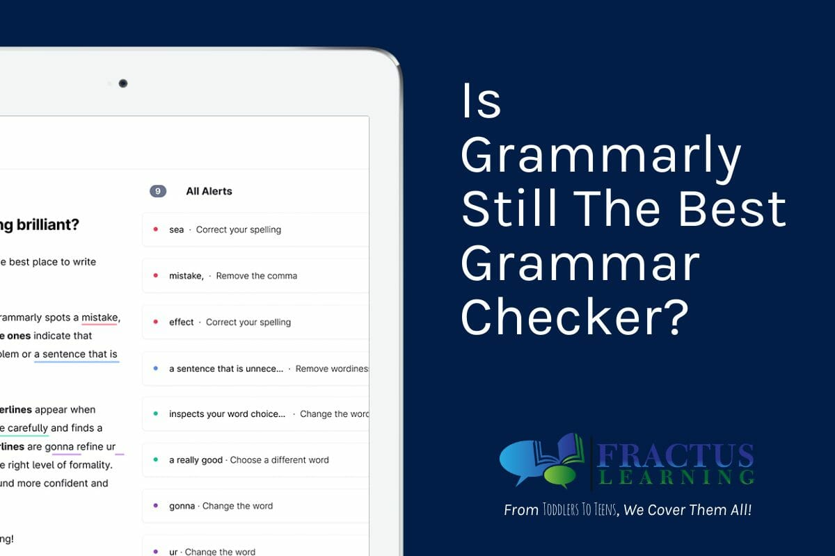 Grammarly Single Review