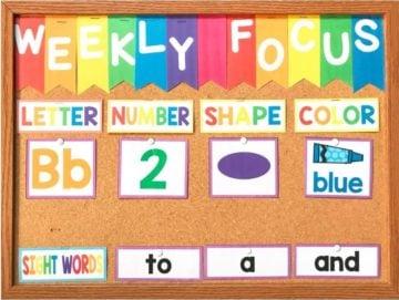 Weekly Focus Preschool Bulletin Board