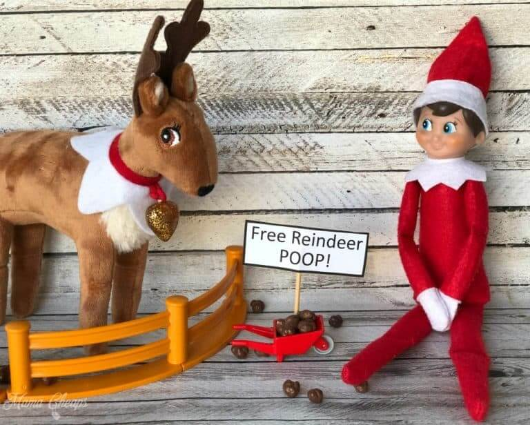 elf on the shelf reinder poop