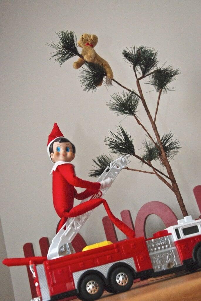 elf on the shelf saving the doggie